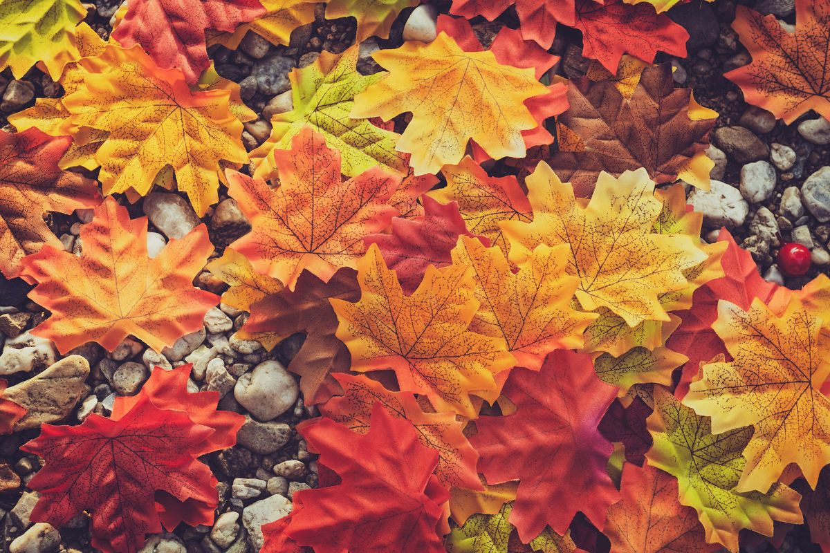 Five easy ways to prep your American Legend home for fall
