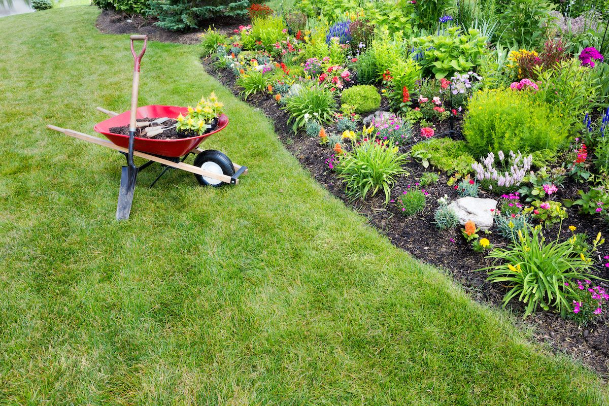 How American Legend families can spruce up their lawn during Lawn and Garden Month
