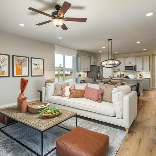 Plan V421 Living Room Representative Image