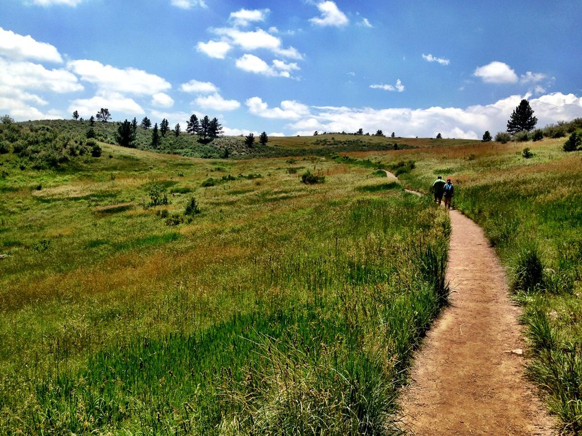 Best Staycations for American Legend families in Northern Colorado