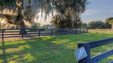 Stonelake Ranch Photo-3