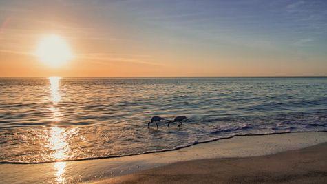 Sunset Beach Photo-3