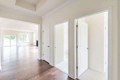 Amelia entry way hardwood floors natural light