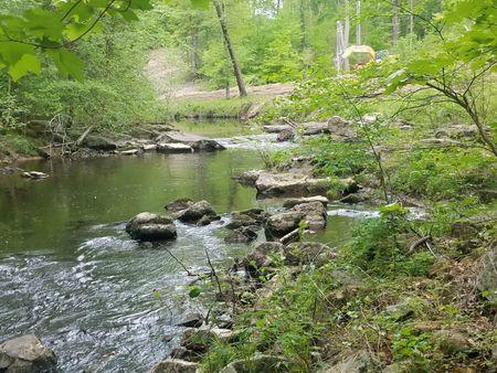 Chickahominy Falls River Spring 2018