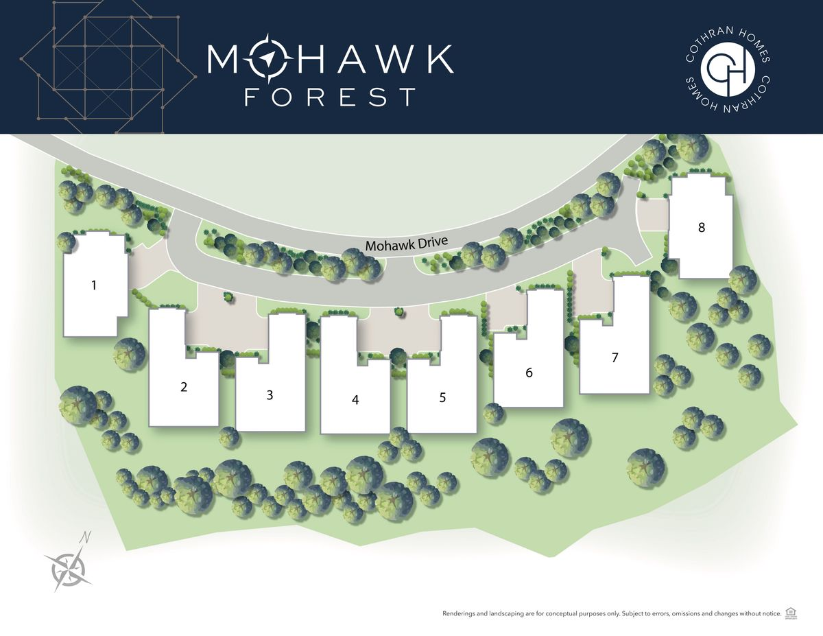 ~Mohawk Forest~