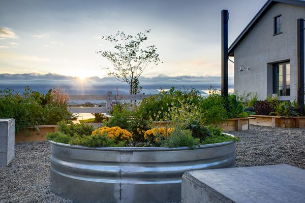 Architectural & Interior Design Photography - Purple Moss Architecture - 10(1)