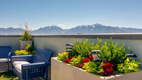 040 Rooftop Planters