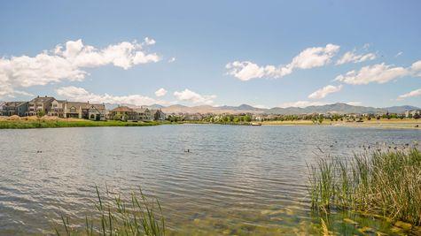 025 Community Pond