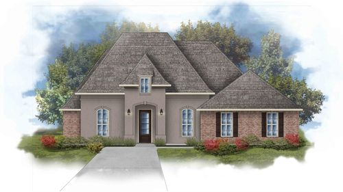 Raphael III B Open Floorplan Elevation Image - DSLD Homes