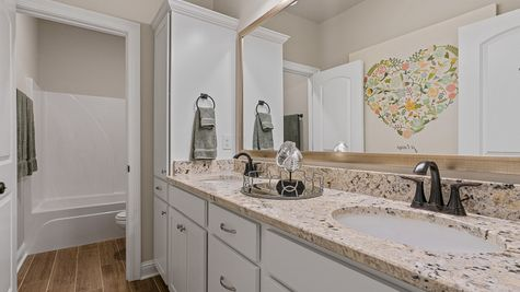 The Estates at Silver Hill Community - DSLD Homes - Sansa II A - Model Home Hall Bathroom