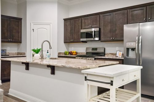 Alexander Ridge - Model Home Kitchen - DSLD Homes - Toulouse III A - Covington, LA