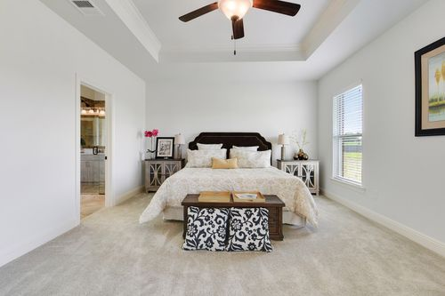 Paige Place - Model Home Master Bedroom - DSLD Homes - Renoir III D - Broussard, LA