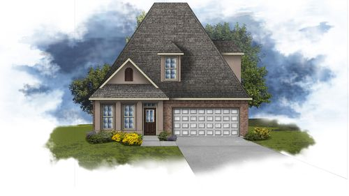 Collier III B - Open Floor Plan - DSLD Homes