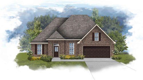 Robbins II A - Open Floor Plan - DSLD Homes