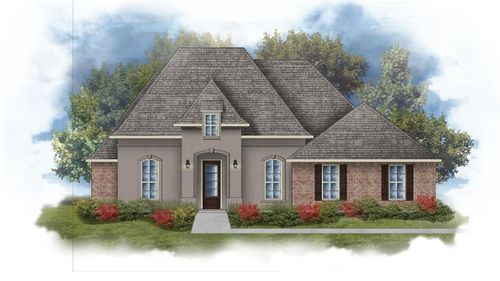 Rossi III B Open Floorplan Elevation Image - DSLD Homes