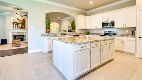Kitchen- crown moulding - white cabinets- silver hardware- granite countertops- kitchen island- corner pantry- LED lighting- arched openings - open floor plan - natural light- DSLD Homes- Lafayette area - Lafayette- Louisiana- The Estates at Moss Bluff