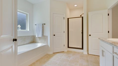 Master Bathroom in Model Home - DSLD Homes - Island Trace in Ponchatoula