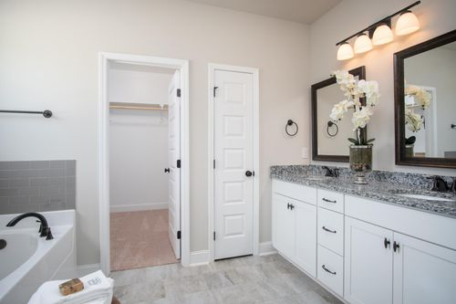 Nature's Cove - Model Home Master Bathroom - DSLD Homes - Collinswood II A - Owens Cross Roads, AL
