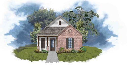 Tonia III C - open floor plan - DSLD Homes