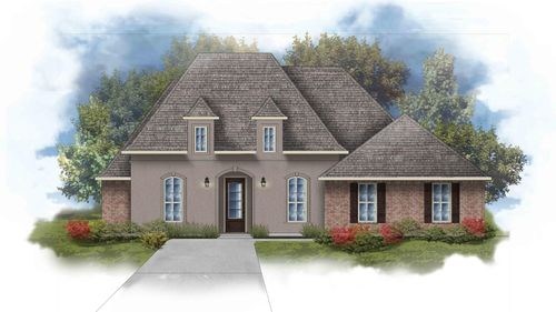 Raphael III A Open Floorplan Elevation Image - DSLD Homes