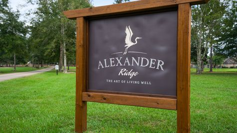 Community Sign - DSLD Homes - Alexander Ridge in Covington