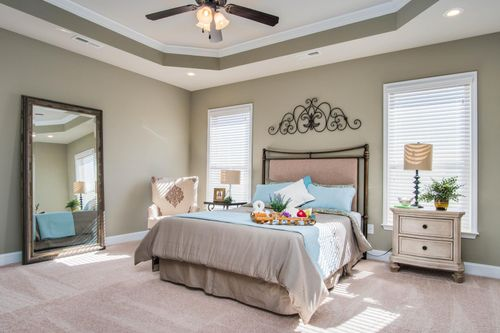 The Hamptons at Piney Creek - Model Home Master Bedroom - DSLD Homes