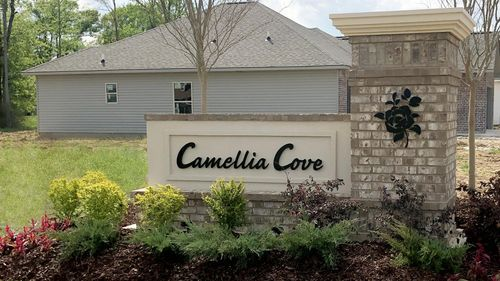 DSLD Homes - Gonzales, LA - Camellia Cove - Community Entrance