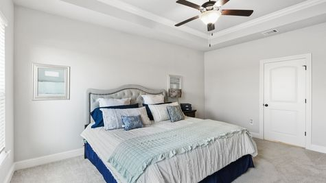 Master Bedroom-crown molding - open floorplan- natural light- carpet- DSLD Homes- Baton Rouge area - Addis- Louisiana- Sugar Mill Plantation