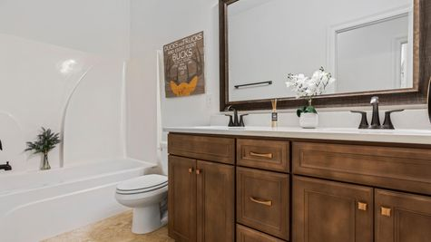 The Preserve at Gray's Creek - Harmand II A - DSLD Homes - Model Home Hall Bathroom