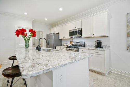 Grand Oaks - Model Home Kitchen - DSLD Homes - Narbonne III A - Gonzales, LA