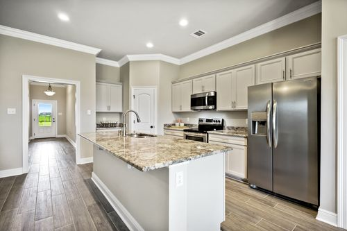 Orleans Run - Model Home Kitchen - DSLD Homes -Trillium III A - Lake Charles, LA