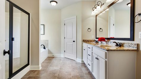 DSLD Homes - Camellia IV A Open Floor Plan - Master Bathroom Image
