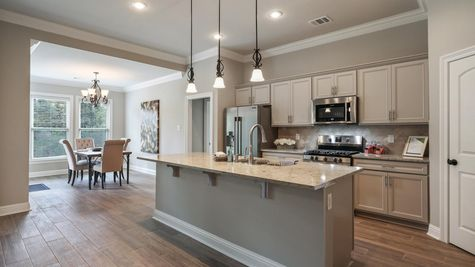 Kitchen in Model Home - DSLD Homes - Audubon Trail in Covington