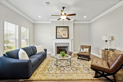 Willow Heights - Model Home Living Room - DSLD Homes - Violet III A - Bossier City, LA