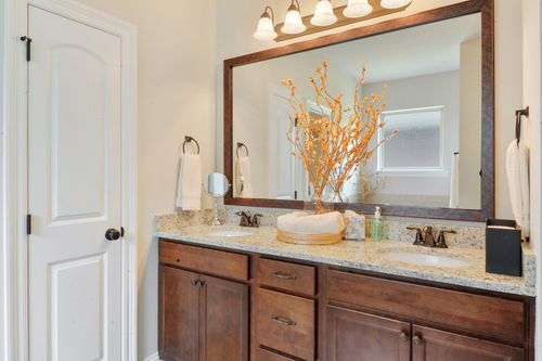 Savoy Place - Model Home Master Bathroom - DSLD Homes - Collinswood II A - Gulfport, MS
