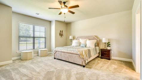 Master Bedroom - open floor plan - carpet- natural light- DSLD Homes- Lafayette area - Lafayette- Louisiana- The Estates at Moss Bluff