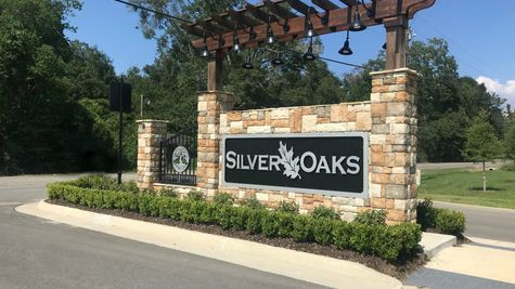 Front Entrance Sign - Silver Oaks - DSLD Homes Prairieville