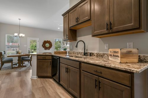 Cambre Oaks - DSLD Homes - Model Home Kitchen - Gonzales, LA - Liberty IV H