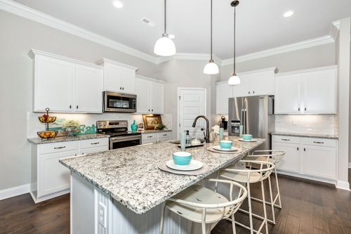 Meadow Crest - Model Home Kitchen - Collinswood II G - Hazel Green, AL - DSLD Homes