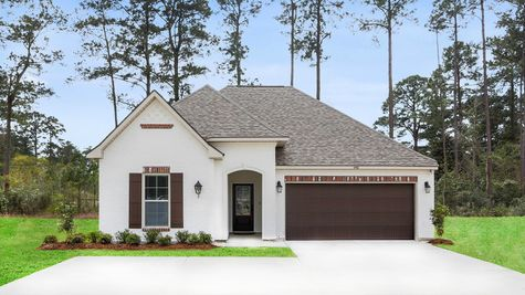 Front of Model Home - DSLD Homes - Audubon Trail in Covington
