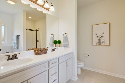 Hunter's Trace - Model Home Master Bathroom - DSLD Homes - Banbury III A - Baton Rouge, LA