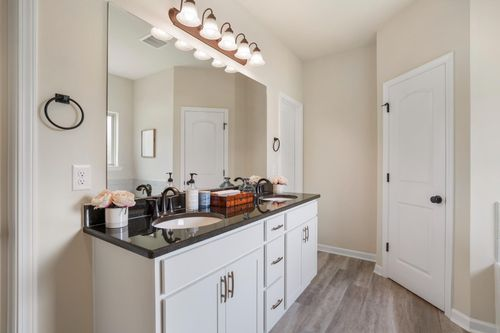 DSLD Homes - Rowland IV G - Oaklawn Trace - Model Home Master Bathroom