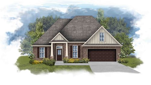 Riverside IV B Open Floor Plan Elevation Image - DSLD Homes