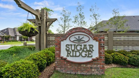 Sugar Ridge Community Entrance Monument - Sugar Ridge Community - DSLD Homes - Lafayette