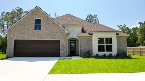 The Estates at Silver Hill Community - DSLD Homes - Sansa II A - Model Home Exterior