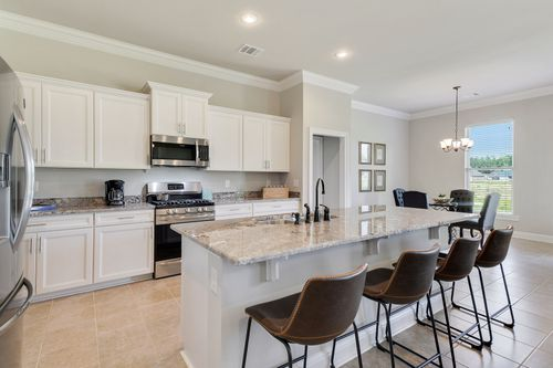 Nickens Lake - Model Home Kitchen - DSLD Homes - Ketty II B - Denham Springs, LA