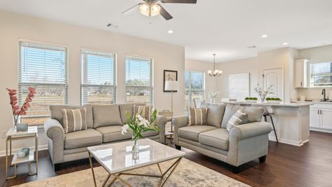 Cottages at Savannah Row- Model Home Living Room - DSLD Homes - Ripley IV A - Prairieville, LA
