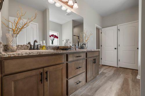 Cambre Oaks - DSLD Homes - Model Home Master Bathroom- Gonzales, LA - Liberty IV H