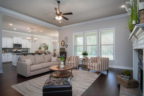 Nature's Cove - Model Home Living Room - DSLD Homes - Collinswood II A - Owens Cross Roads, AL