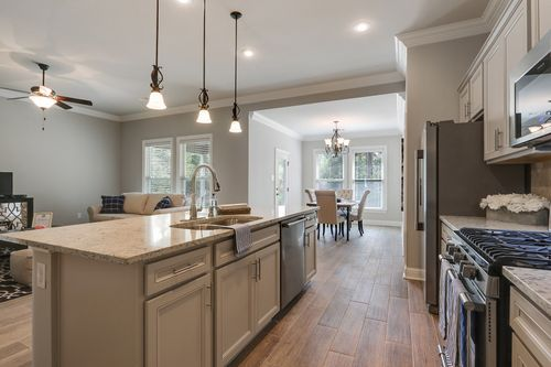 Audubon Trail - Model Home Kitchen - DSLD Homes - Trevi III A - Covington, LA